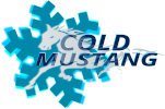 Cold Mustang
